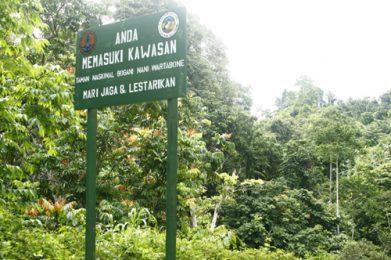 Taman Nasional Bogani Nani Wartabone