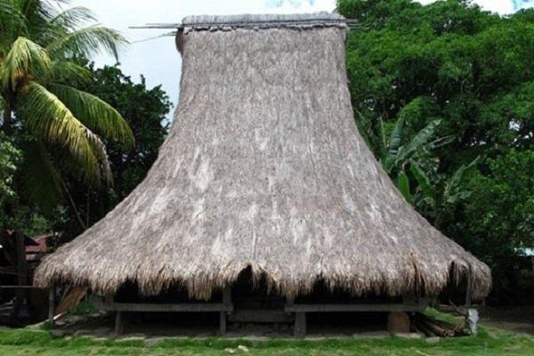 Rumah Adat Musalaki