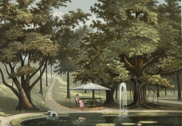 1882-1889 Danau dengan air mancur di Kebun Raya Bogor, wisata di bogor, Pariwisata Favorit di Kota Bogor, Wisata Edukasi di Bogor, Istana Bogor, Presiden Jokowi Tinggal di Istana Bogor, Pariwisata Indonesia